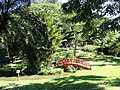 Chinese bridge - San Juan Botanical Garden - DSC06975.JPG