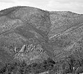 Chiricahua National Monument outcropping of rocks in black and white.jpg
