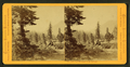 Cisco, Red Mountains in the distance, by Muybridge, Eadweard, 1830-1904.png