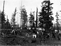 Clearing land for playgrounds, Riverton Heights School District, Washington, 1909 (WASTATE 315).jpeg