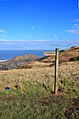 Cleveland Way Finger Post, Kettleness - geograph.org.uk - 1736541.jpg