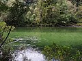 Clinton River - 2013.04 - panoramio.jpg