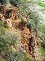 Closeup of Weathered Rock, Agua Fria River, AZ 2013 - panoramio.jpg