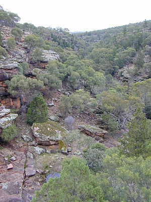 Cocoparra National Park - Store Creek, located within the national park