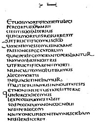 The Latin text of Romans 7:4-7 from Codex Claromontanus