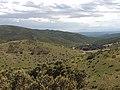 Coll de Banyuls 2011 15.jpg