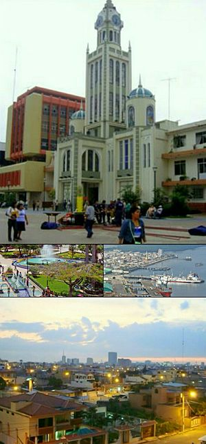 Collage Machala.jpg