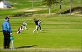 College golf.jpg