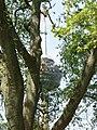 Colonius - panoramio.jpg