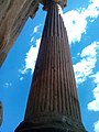 Colonne sur l'arc de Trajon (Timgad) 5.jpg