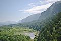 Columbia Gorge from Horsetail Falls Hike, Oregon - Anna Del Savio.jpg