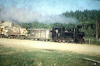 Forest railway - Forest railway operations in Comandău, Romania (Photograph from 1996)
