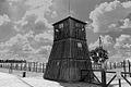 Concentratie kamp Majdanek.jpg