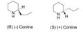 Coniine enantiomers 2.png