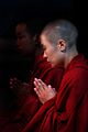 Contemplative Buddhist monks from Bhutan - Flickr - babasteve.jpg