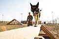 Controlled training exercises 130129-F-HX529-130.jpg