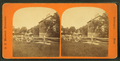 Courthouse and frog pond showing fences lining pond, by H. P. McIntosh.png