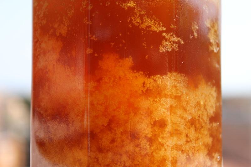 File:Cristallizzazione del miele IMG 0373.JPG