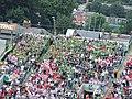 Croke Park fans on the hill.jpg