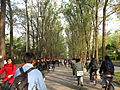 Crowd in Tsinghua University.jpg