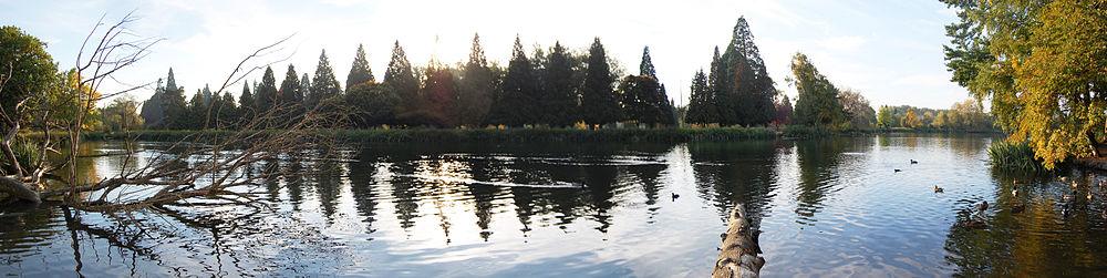 A Lake In The Garden