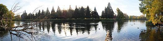 Portal oregon wikipedia for Crystal springs rhododendron garden