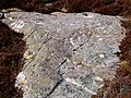 Cup Marked Rock - geograph.org.uk - 1377941.jpg
