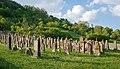 Dörzbach - Hohebach - Jüdischer Friedhof - Ansicht 1.jpg
