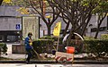 DPETC workers at Tianmu Sports Area 20150102.jpg