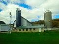 Dairy Farm in Sauk County - panoramio.jpg