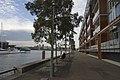 Darling Island, Pyrmont - panoramio (4).jpg