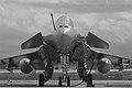 Dassault Rafale (8681244688).jpg