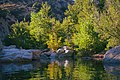 Deep Creek Hot Springs Mojave River 15.jpg