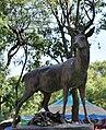 Deer2VenadosDF.JPG