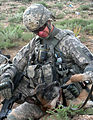 Defense.gov News Photo 100511-A-9881B-019 - Commander of the 86th Infantry Brigade Combat Team Col. William Roy U.S. Army out of Jericho Vt. pets a military working dog during an.jpg