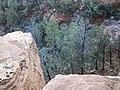 Devil's Bridge Trail, Sedona, Arizona - panoramio (45).jpg