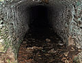 Devonport Leat tunnel above Clearbrook.jpg