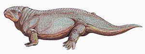 Diadectomorpha - Life restoration of Diadectes