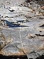 Dike in metatuffs (Cranberry Island Series, Upper Silurian, 424 Ma; Seawall Beach, Mt. Desert Island, Maine, USA) 2.jpg