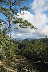 DirkvdM baracoa nipple-hill.jpg