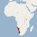 Distribution of Petromus typicus.png