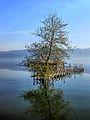 Dojran Lake 261.jpg