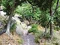 Dolina Echa, ścieżka górna - panoramio.jpg