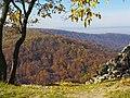 Drégelypalánk, 2646 Hungary - panoramio - id.nfero (10).jpg
