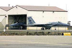 Iceland Defense Force - U.S. Air Force F-15 stationed at Keflavik