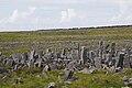 Dun Aengus stone barrier.jpg