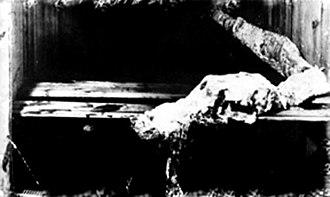 Cadborosaurus - The Effingham Carcass, Vancouver Island, 1947; supposed remains of 'Caddy'