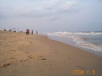 Flora and fauna of Chennai - Facing north on Elliot's Beach in Besant Nagar.