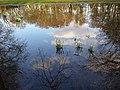 Elsrijk, 1181 Amstelveen, Netherlands - panoramio (10).jpg