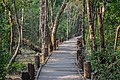 Entry of Sundarban Forest ,Bangladesh.jpg